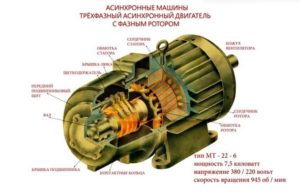 Строение асинхронного двигателя с фазным ротором